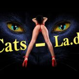 Cats LA