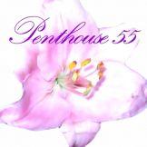 Penthouse 55