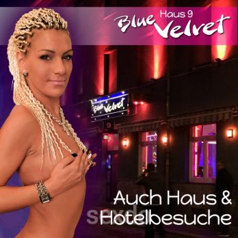 Blue Velvet Haus 9